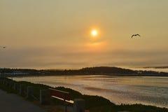Поплавайте вдоль побережья заход солнца парка, серповидный город, Калифорния Стоковое Изображение