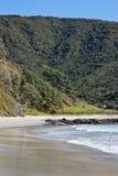поплавайте вдоль побережья Новая Зеландия Стоковая Фотография RF