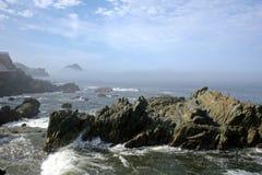 поплавайте вдоль побережья mazatlan Стоковые Изображения RF