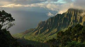 поплавайте вдоль побережья napali kauai Стоковое Изображение