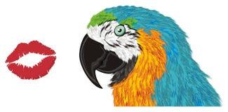 Попугай и поцелуй иллюстрация штока
