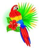 Попугай с лист и гибискусом ладони Стоковые Изображения RF