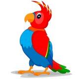 Попугай Иллюстрация штока