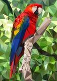 Попугай Ara низко поли Стоковое Фото