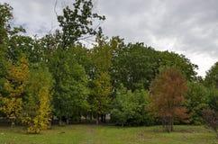Популярный северный парк для остатков с осенним старым лесом в районе Vrabnitsa Стоковое Фото