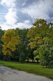 Популярный северный парк для остатков с осенним старым лесом в районе Vrabnitsa Стоковые Изображения RF