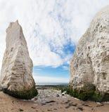 Популярное белое побережье английского канала Манша Ла залива ботаники скал, Стоковое Изображение RF