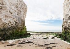 Популярное побережье английского канала Манша Ла залива ботаники, Кент, Englan Стоковое фото RF