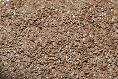 Популярные льняные семена или льняные семена, для их питательного и пособий по болезни стоковые изображения rf