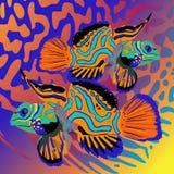 попыгаи 2 рыб иллюстрация штока