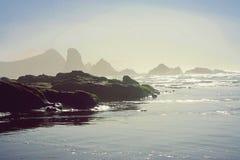 поплавайте вдоль побережья Орегон Стоковые Фото