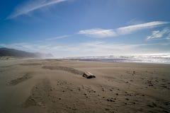поплавайте вдоль побережья Орегон Стоковая Фотография RF