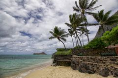 поплавайте вдоль побережья hawaiian Стоковые Фото