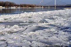 Поплавок ледниковых щитов на реке Дунае стоковое изображение rf