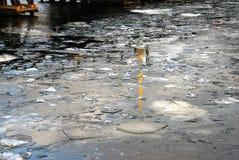 Поплавок частей льда на поверхности воды Стоковые Фотографии RF