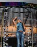 поп-звезда дягиля agurbash Стоковые Изображения RF