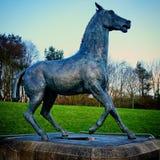 Поражанная скульптура лошади бронзовая Марк Delf Стоковая Фотография RF