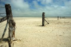 пораженная засуха Стоковые Фотографии RF