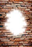 пористая стена Стоковое Изображение