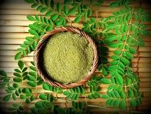 Порошок лист Moringa стоковые фотографии rf