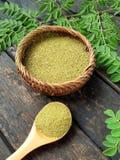 Порошок лист Moringa стоковая фотография rf