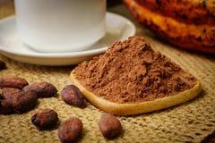 Порошок какао около белой чашки, сырцового плодоовощ какао, фасолей какао Стоковые Фотографии RF