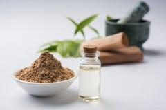 Порошок, масло и затир сандаловых деревьев Ayurvedic Стоковые Изображения