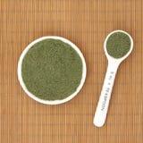 Порошок травы Moringa Oleifera Стоковое фото RF