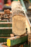Портативная лесопилка Стоковые Фото