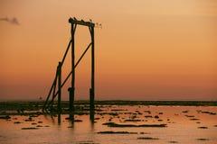 Портал ` s острова цапли на заходе солнца Стоковая Фотография