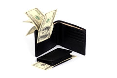 портмоне раскрытое деньгами Стоковое фото RF