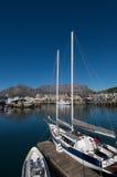 портовый район вертикали Cape Town Стоковая Фотография RF
