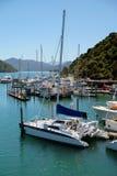 Портовый район Picton NZ Стоковое фото RF