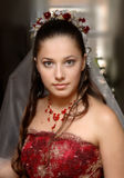 портреты wedding Стоковые Изображения
