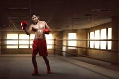 Портрет азиатского боксера выполняя апперкот на боксерском ринге Стоковое Изображение