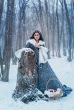 Портрет белизны снега Стоковое фото RF
