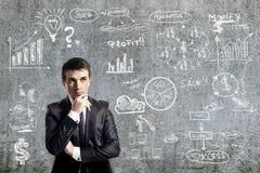 Портрет бизнесмена и бизнес-плана на стене grunge Стоковое Изображение RF
