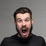 Портрет бизнесмена удивленного детенышами с Стоковое Изображение RF