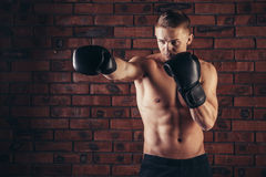 Портрет бойца Muttahida Majlis-E-Amal в представлении бокса против кирпичной стены Стоковая Фотография