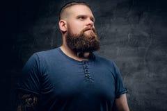 Портрет бородатого мужчины на серой предпосылке виньетки Стоковое фото RF