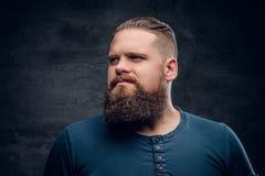 Портрет бородатого мужчины на серой предпосылке виньетки Стоковые Фотографии RF
