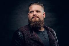 Портрет бородатого мужчины на серой предпосылке виньетки Стоковая Фотография