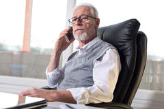 Портрет бородатого старшего бизнесмена говоря на мобильном телефоне, трудном свете Стоковое Изображение RF