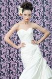 Портрет брюнет невесты Стоковые Изображения RF