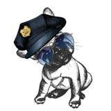 Портрет вектора близкий поднимающий вверх полицейской собаки Щенок французского бульдога нося пиковую крышку и солнечные очки Стоковая Фотография RF