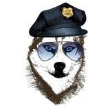 Портрет вектора близкий поднимающий вверх полицейской собаки Сибирская лайка нося пиковую крышку и солнечные очки Стоковое Изображение RF