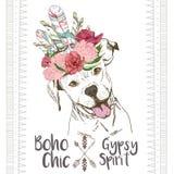 Портрет вектора близкий поднимающий вверх собаки pitbull, нося индийскую заставку пера Традиционное украшение шика boho Стоковые Изображения