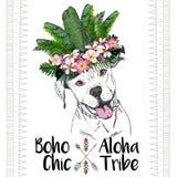 Портрет вектора близкий поднимающий вверх собаки pitbull, нося экзотическую крону цветка Шик Boho Стоковая Фотография