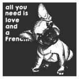 Портрет вектора близкий поднимающий вверх щенка французского бульдога, изолированный на предпосылке черного квадрата Все вам влюб Стоковые Изображения RF