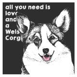 Портрет вектора близкий поднимающий вверх corgi welsh, на предпосылке черного квадрата Все вам влюбленность и собака Стоковая Фотография RF